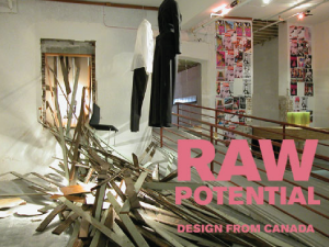 Raw Potential Exhibition